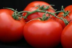 Plan rapproché rouge de tomate sur le noir Photos stock
