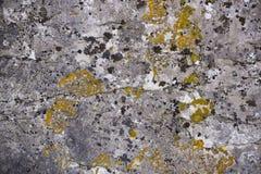 Plan rapproché sans couture de fond de texture de roche Photographie stock libre de droits