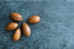 Plan rapproché sur des noix de pécan sur le substrat en pierre Photographie stock