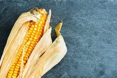 Plan rapproché sur l'épi de maïs sur le substrat en pierre Photographie stock libre de droits