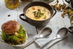 Plan rapproché sur les champignons de couche et la soupe à champignons frais Images stock