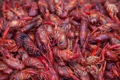 Plan rapproché sur les crevettes roses rouges fraîches Photos stock