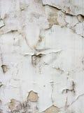 Plan rapproché texturisé gris-clair de fond Abstraction Photo libre de droits