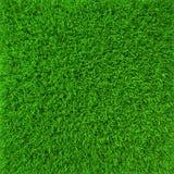 Plan rapproché vert de texture de fond d'herbe de pelouse 3d Image libre de droits