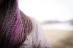 Plan rapproché violet de cheveux de femme Image libre de droits