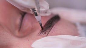 Plan rapproch? Application de la peinture sur le sourcil, maquillage permanent 4K MOIS lent banque de vidéos