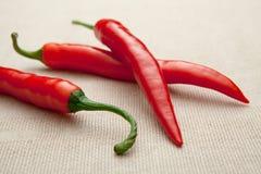 Plan rapproché d'un rouge ardent frais de poivre de /poivron de Cayenne Image stock