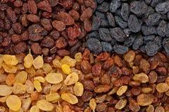 Plan rapproché de raisin sec Image libre de droits