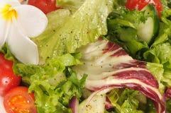 Fermez vous vers le haut de la salade verte avec les for Vers des salades