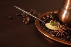 Plan rapproché des cosses, de l'anis et du sucre roux de cardamome dans une cuillère à café Images stock