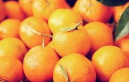 Plan rapproch? des mandarines m?res images stock