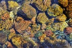 Plan rapproché des pierres par l'écoulement clair de l'eau Image stock
