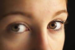 Plan rapproché des yeux Images stock
