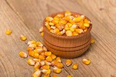 Plan rapproché frais de maïs Image libre de droits