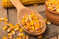 Plan rapproché frais de maïs Photos libres de droits