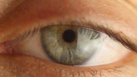 Plan rapproch? masculin d'oeil de clignotement regardant autour Art?re rouge sur le macro de globe oculaire R?action d'?l?ve ? al banque de vidéos