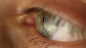Plan rapproch? masculin d'oeil de clignotement regardant autour Art?re rouge sur le macro de globe oculaire R?action d'?l?ve ? al clips vidéos