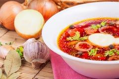 Plan rapproché national biélorusse de soupe Image stock