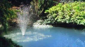 Plan rapproch? Pulv?risation d'une fontaine dans un petit ?tang en parc avec des arbres, herbe verte banque de vidéos