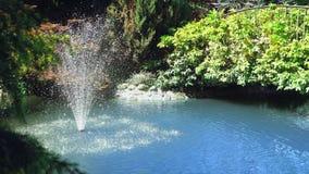 Plan rapproch? Pulv?risation d'une fontaine dans un petit ?tang en parc avec des arbres, herbe verte images libres de droits