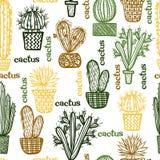 Plan sömlös modell med suckulentväxter och kakturs i krukor Vektor Illustrationer