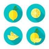 Plan symbol för citron Arkivbilder