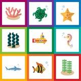 Plan symbol Marine Set Of Shark, alger, havsväxt och andra vektorobjekt Inkluderar också havsväxt, ubåten, havsbeståndsdelar stock illustrationer