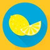 Plan symbolscitron för vektor, guling, blått Arkivbild
