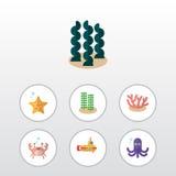 Plan symbolshavsuppsättning av cancer, havsstjärna, tentakel och andra vektorobjekt Inkluderar också havet, cancer, sjöstjärnabes stock illustrationer
