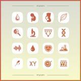 Plan symbolsuppsättning Royaltyfria Bilder