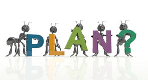 Plan team. Black ants-concept Stock Image
