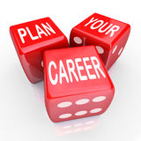 Plan Your Career Dice Gamble Future Opportunity Stock Photography