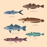 Plana fiskar för gullig tecknad film Royaltyfria Bilder