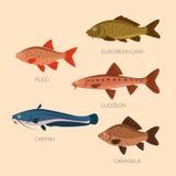 Plana fiskar för gullig tecknad film stock illustrationer