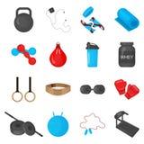 Plana moderiktiga färgsymboler ställde in med beståndsdelar för sportutrustningar för idrottshall- eller konditionklubbaflayers Royaltyfri Foto
