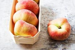 plana persikor Fotografering för Bildbyråer