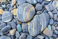 Plana skinande stenar på stranden Arkivfoton