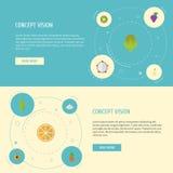 Plana symboler nektarin, böna, exotisk efterrätt och andra vektorbeståndsdelar Uppsättningen av symboler för efterrättlägenhetsym Fotografering för Bildbyråer