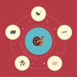 Plana symboler tupp, svin, kalkontupp och andra vektorbeståndsdelar Uppsättning av zoologilägenhetsymboler Fotografering för Bildbyråer