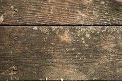 Plance di legno del cedro Fotografie Stock Libere da Diritti