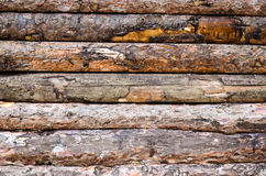 Plance di legno senza giunte Immagine Stock Libera da Diritti