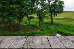 Plance di legno sui precedenti della natura fotografie stock