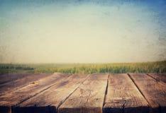 Plance e fondo di legno rustici del prato Fotografia Stock