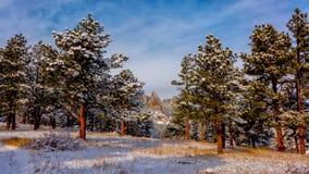 Planchas de Boulder en nieve Imagen de archivo