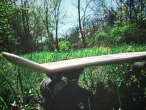 Planche à roulettes dans l'herbe avec des tournesols photo stock