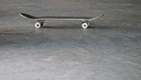 Planche à roulettes en parc de patin Photos stock
