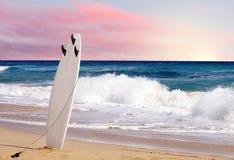 Planche de surf sur la plage Photographie stock libre de droits
