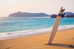 Planche de surf sur la plage sauvage Photos libres de droits