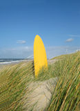 Planche de surfing à la plage Photographie stock