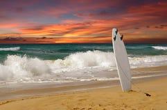 Planche de surfing Images libres de droits